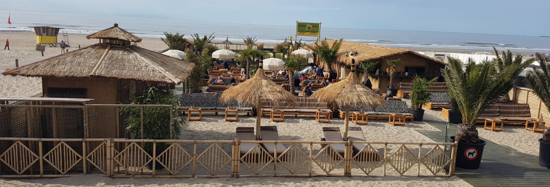 bamboo-beach
